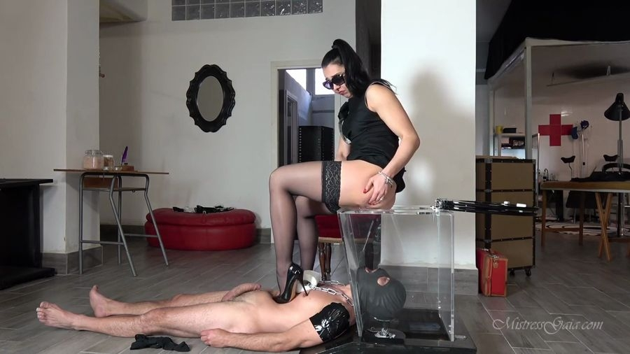 SEE THROUGH TOILET - Sex With MISTRESS GAIA (2018) [HD 720p MPEG-4 Video 1280x720 25.000 FPS 1451 kb/s / mp4]